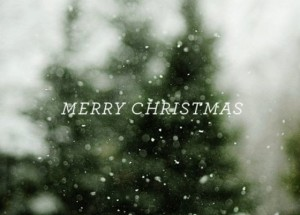 40 Best Christmas Quotes And Wishes With Pictures
