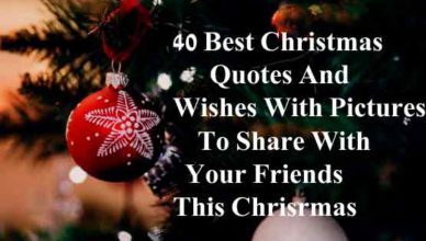 Best-christmas-quotes-wishe