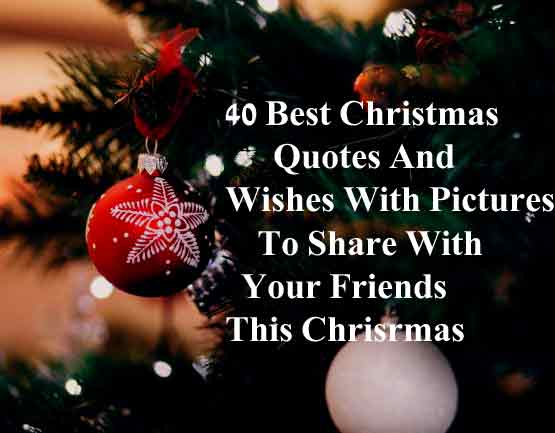 40 Best Christmas Quotes And Wishes With Pictures To Share With Family And  Friends